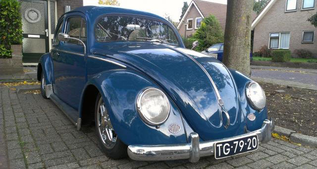 vw beetle oval 1955