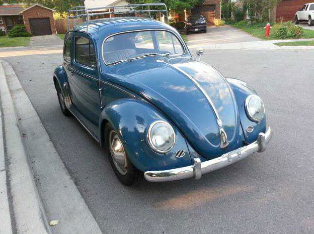 1954 Euro Bug for sale