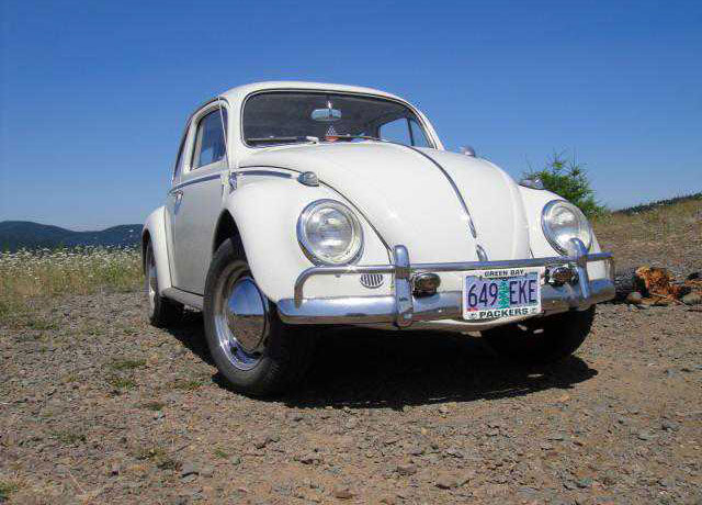 1964 vw bug for sale