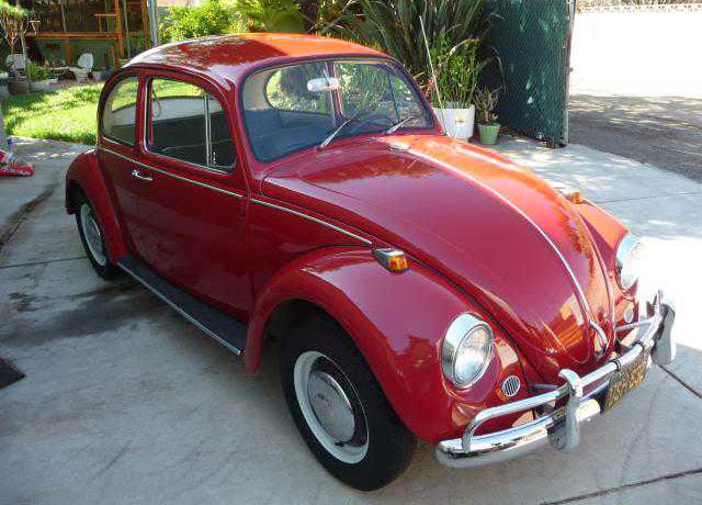 vw bug for sale