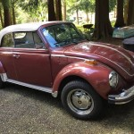 1978 VW Super Beetle Champagne Edition Convertible