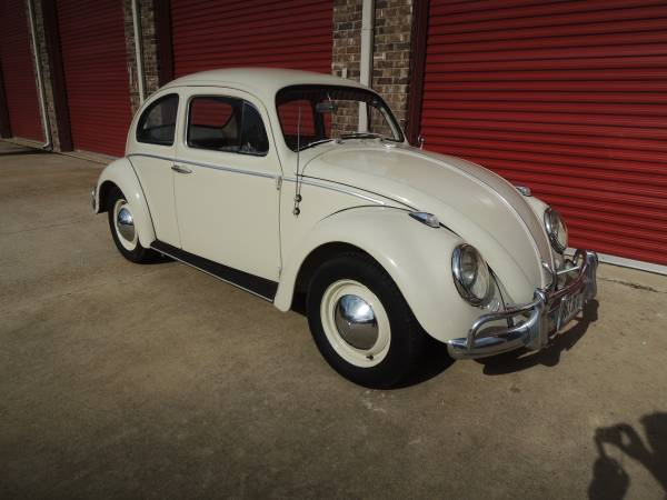 1963 vw beetle survivor