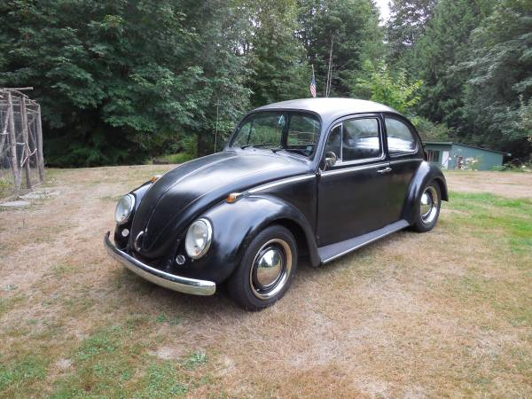 classic volkswagen beetle for sale buy classic volks. Black Bedroom Furniture Sets. Home Design Ideas